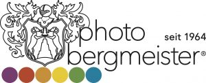 Logo_Bergmeister